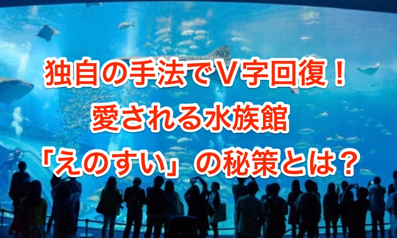 独自の手法でV字回復!愛される水族館、「えのすい」の秘策とは?